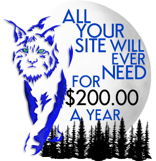 Blue Lynx Design Premium Site Hosting for $200.00 a year.