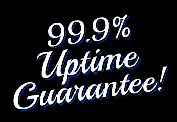 99.9% Uptime Guarantee on Premium Web Hosting from Blue Lynx Design